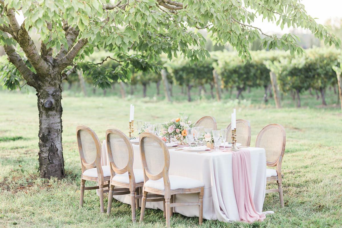 lucy-tran-photography-vineyard-bride-swish-list-gracewood-estates-kurtz-orchards-niagara-on-the-lake-wedding-editorial-24.jpg