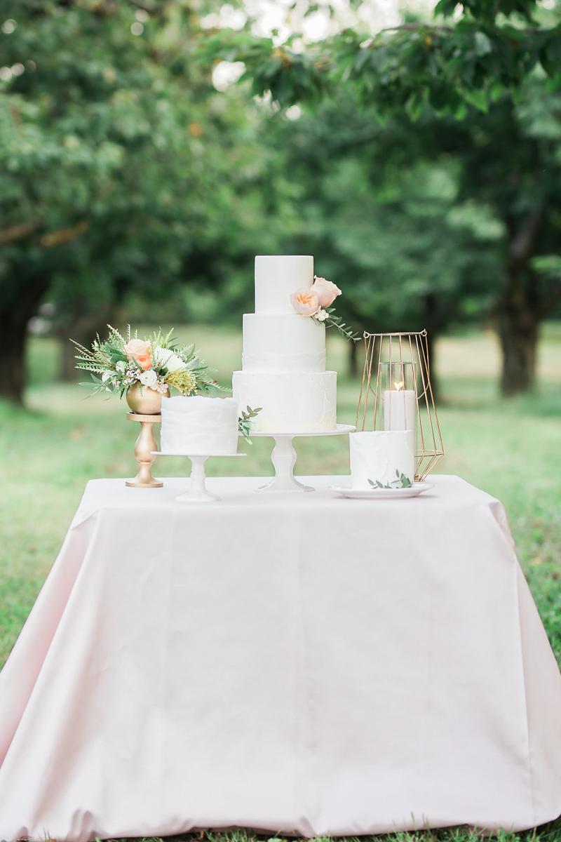 lucy-tran-photography-vineyard-bride-swish-list-gracewood-estates-kurtz-orchards-niagara-on-the-lake-wedding-editorial-29.jpg