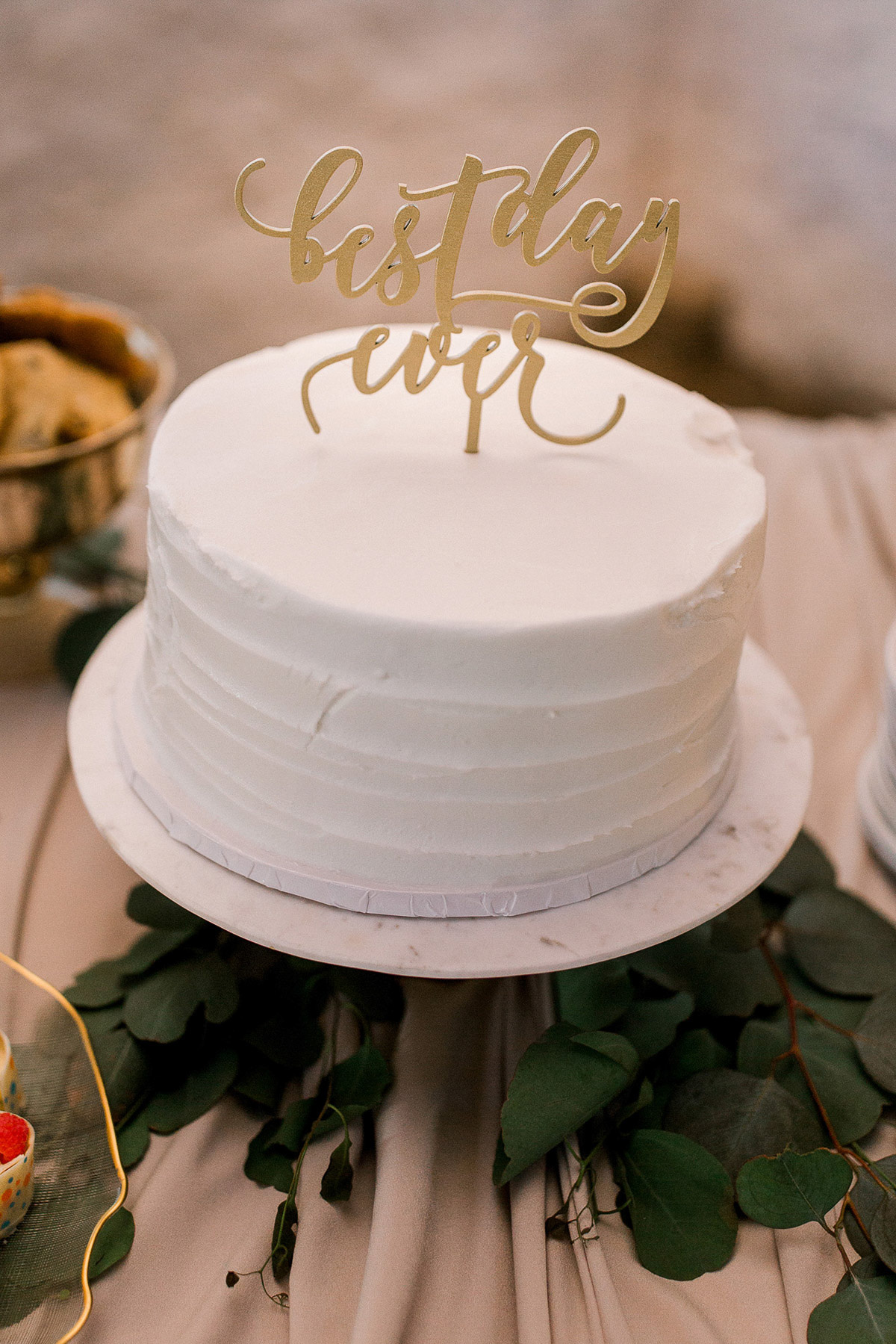 beatrice-elford-photography-vineyard-bride-swish-list-balls-falls-vineland-wedding-69.jpg
