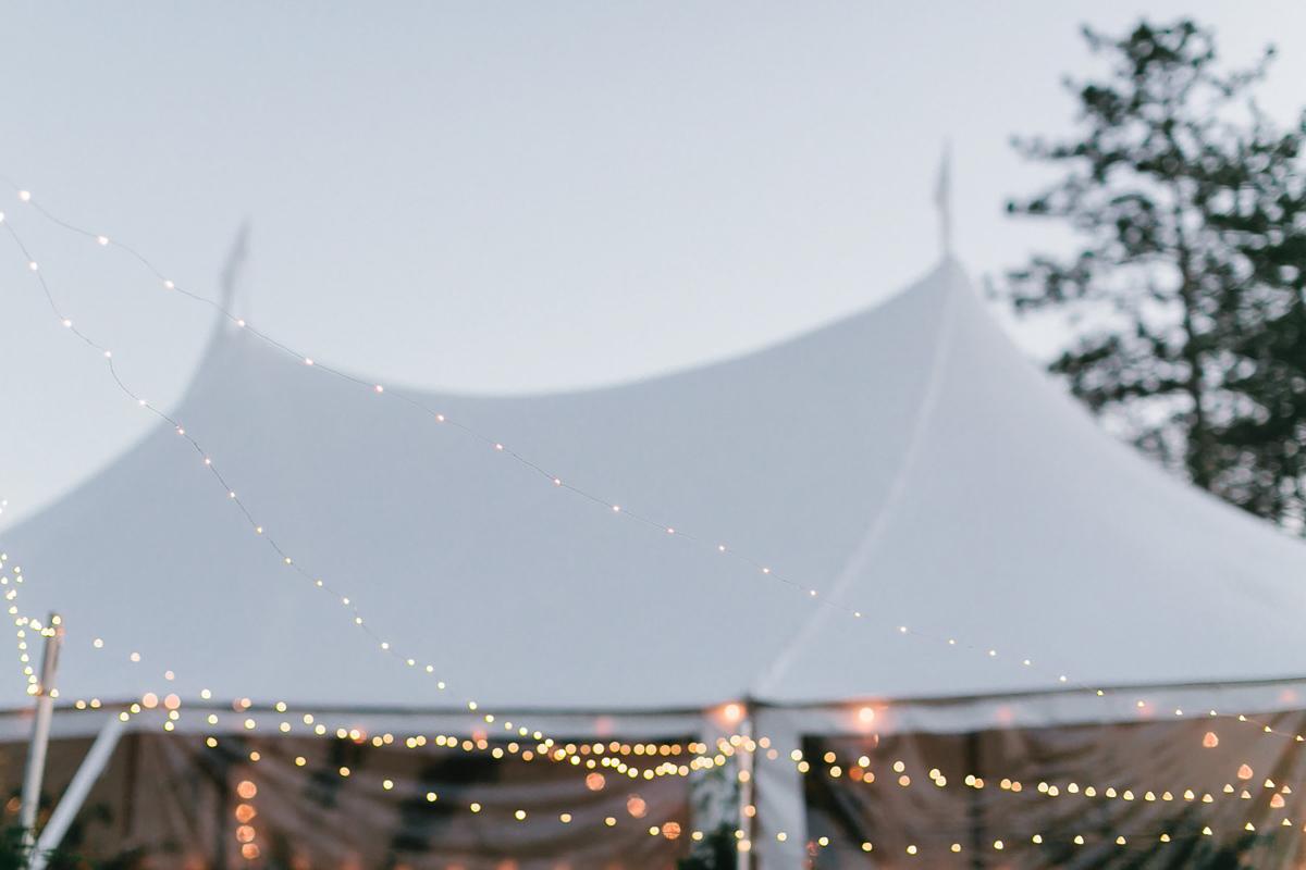 artiese-studios-vineyard-bride-swish-list-private-estate-cambridge-wedding-16.jpg