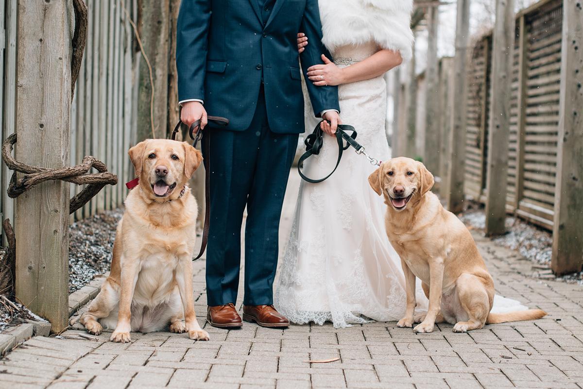 sara-wilde-photography-vineyard-bride-swish-list-inn-on-the-twenty-jordan-wedding-26.jpg