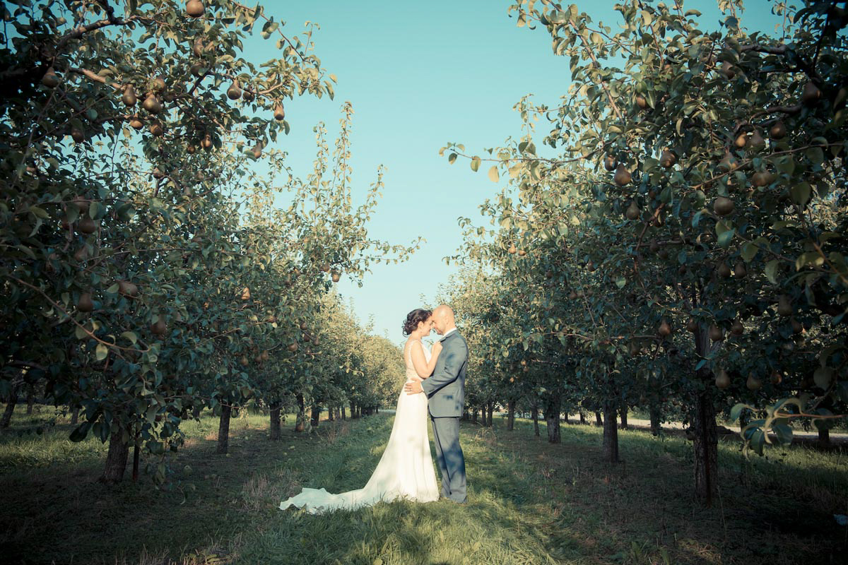 spirits-intrigued-photography-vineyard-bride-swish-list-honsberger-estates-winery-wedding-23.jpg