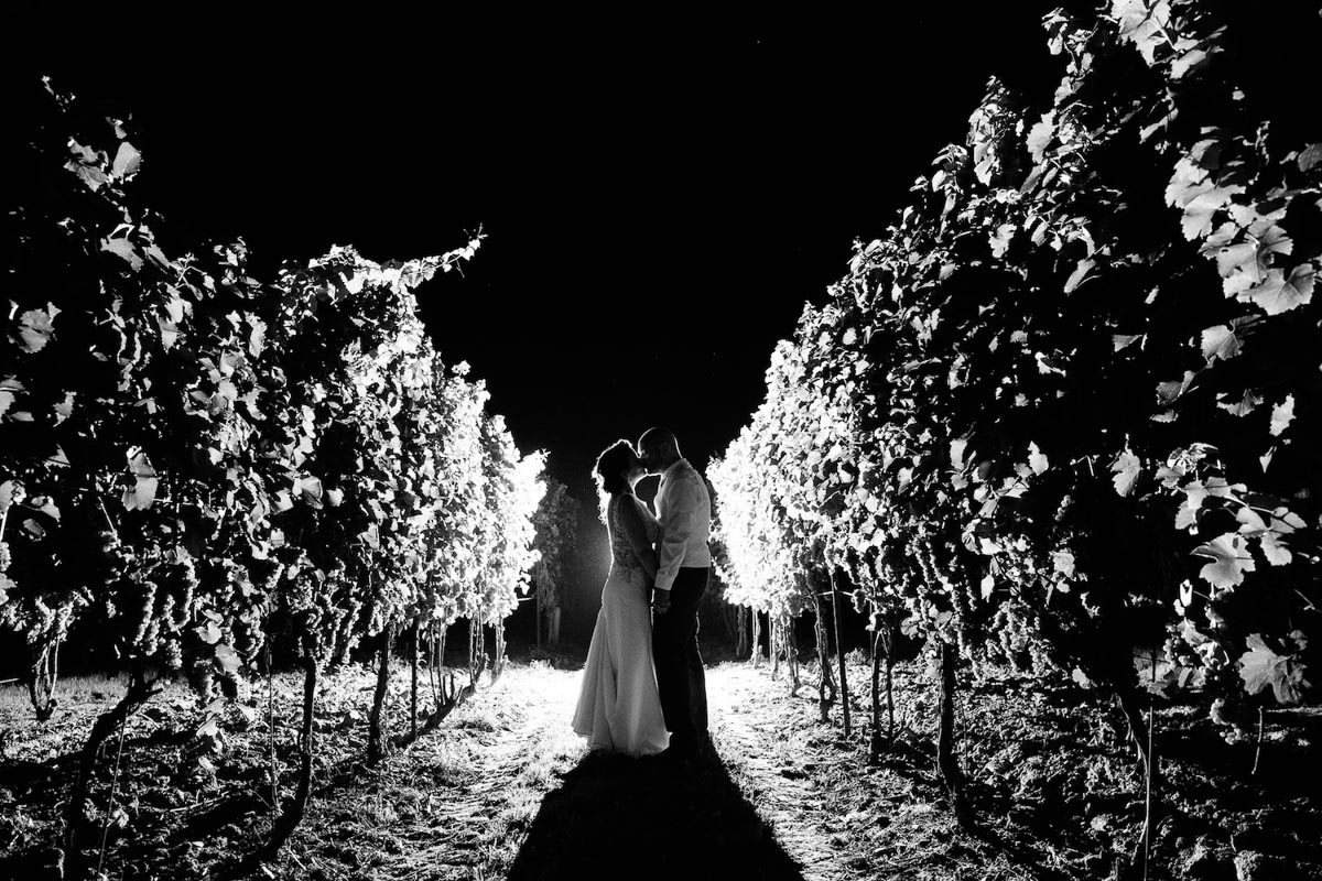 spirits-intrigued-photography-vineyard-bride-swish-list-honsberger-estates-winery-wedding-46.jpg