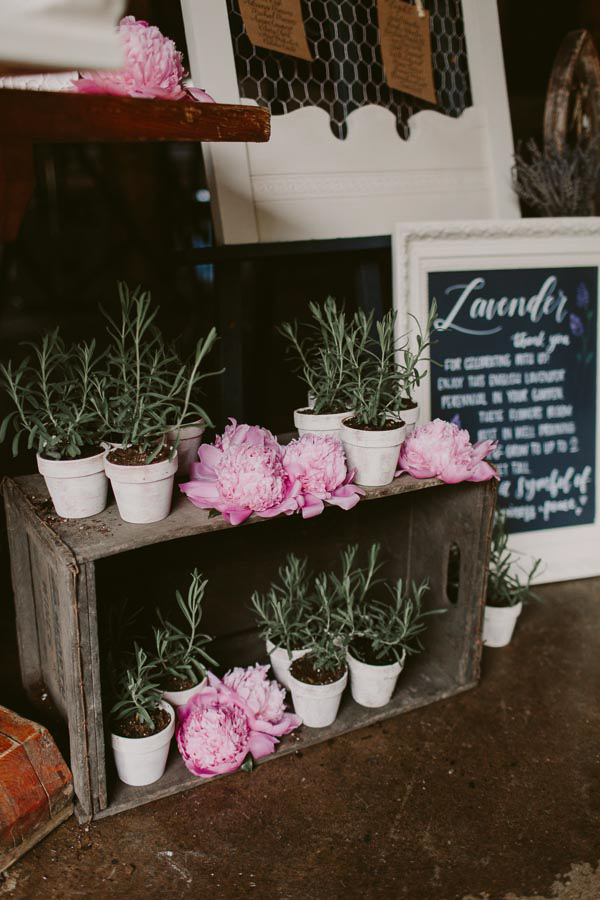 brandon-scott-photography-vineyard-bride-swish-list-balls-falls-vineland-engagement-30.jpg