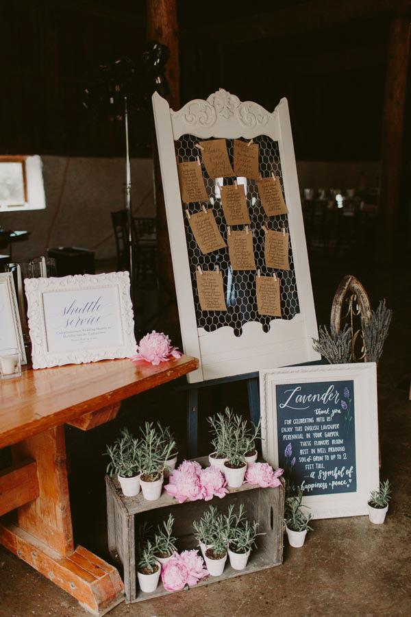 brandon-scott-photography-vineyard-bride-swish-list-balls-falls-vineland-engagement-31.jpg