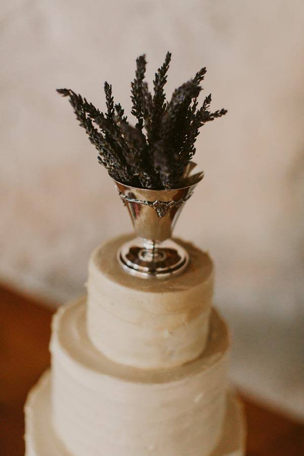 brandon-scott-photography-vineyard-bride-swish-list-balls-falls-vineland-engagement-48.jpg