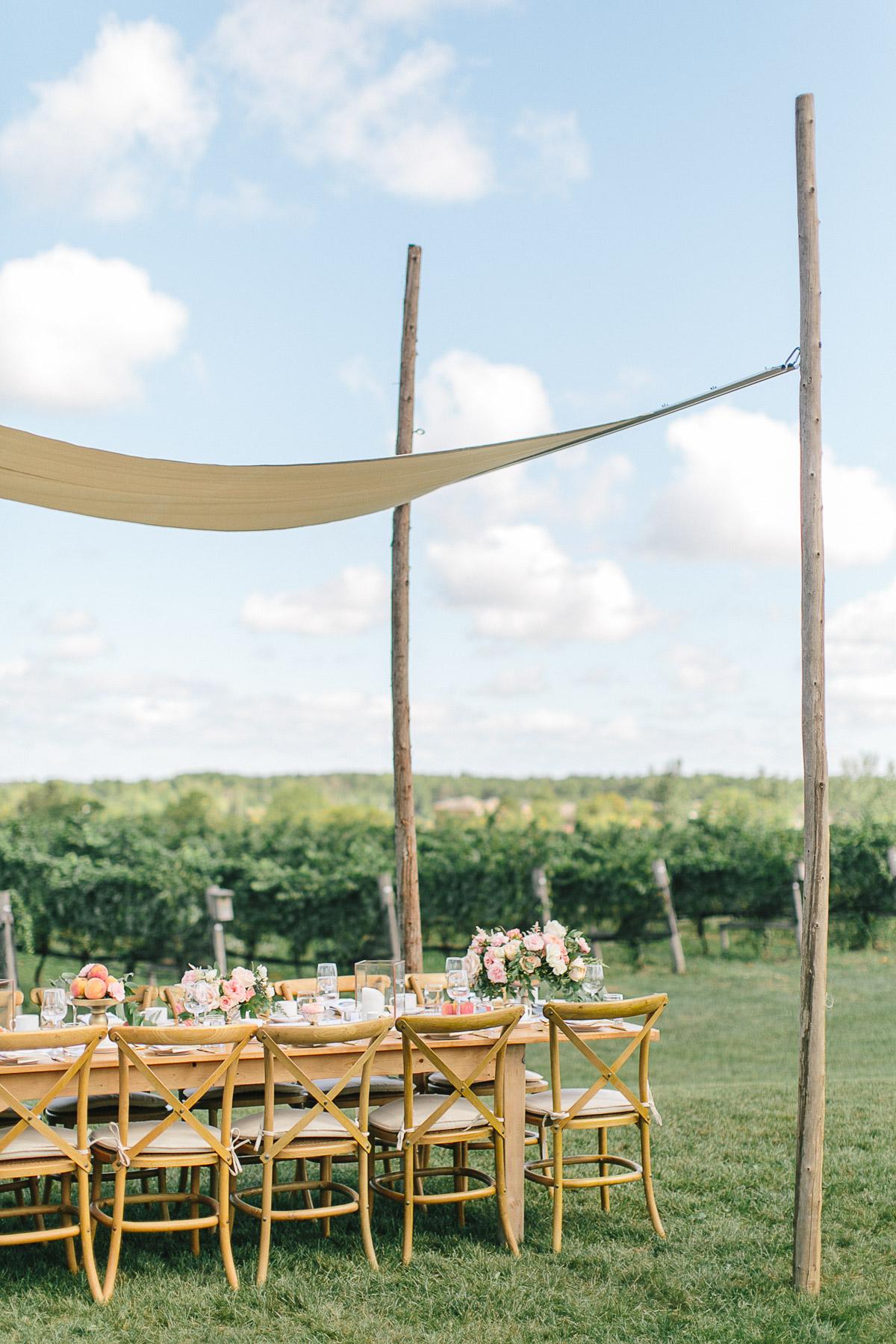 tamara-lockwood-photography-vineyard-bride-swish-list-ravine-vineyard-niagara-on-the-lake-editorial-1.jpg
