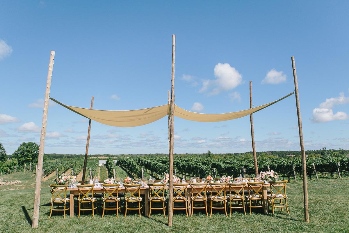 tamara-lockwood-photography-vineyard-bride-swish-list-ravine-vineyard-niagara-on-the-lake-editorial-18.jpg