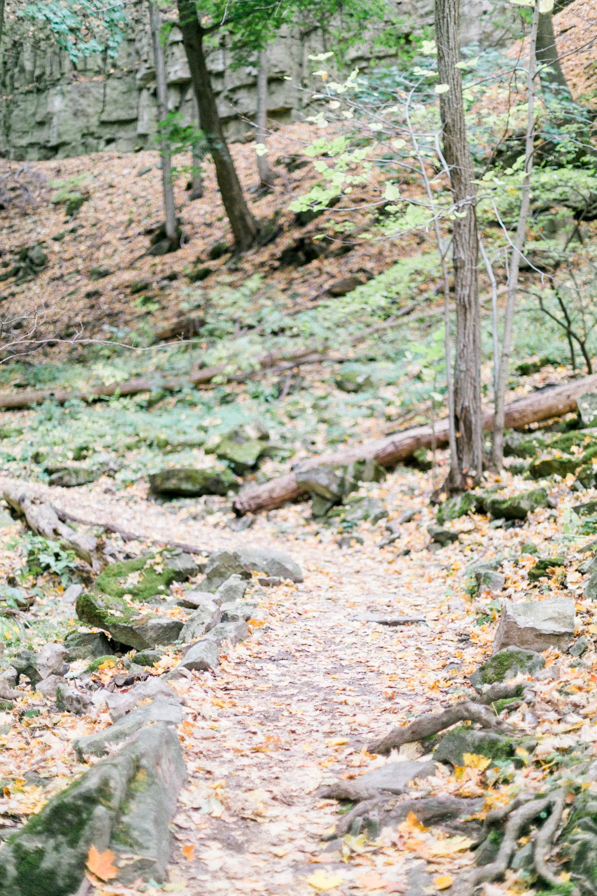 melissa-northcott-photography-vineyard-bride-swish-list-hamilton-waterfall-editorial-28.jpg