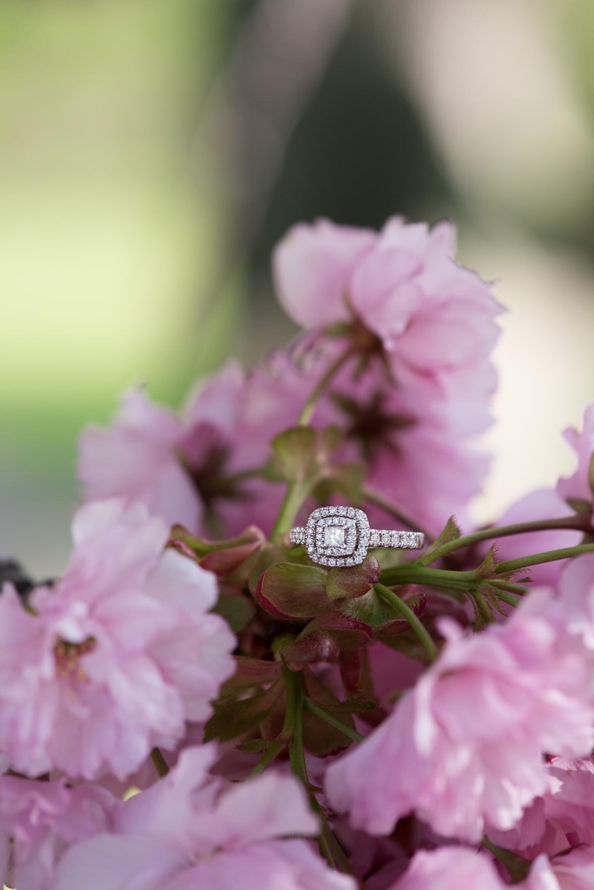 love-always-photography-vineyard-bride-swish-list-mcfarland-house-niagara-on-the-lake-engagement-22.jpg