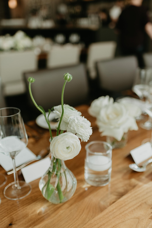 vineyard-bride-robin-sassi-outdoor-summer-wedding-redstone-winery-niagara-toronto-vendor-0027.JPG