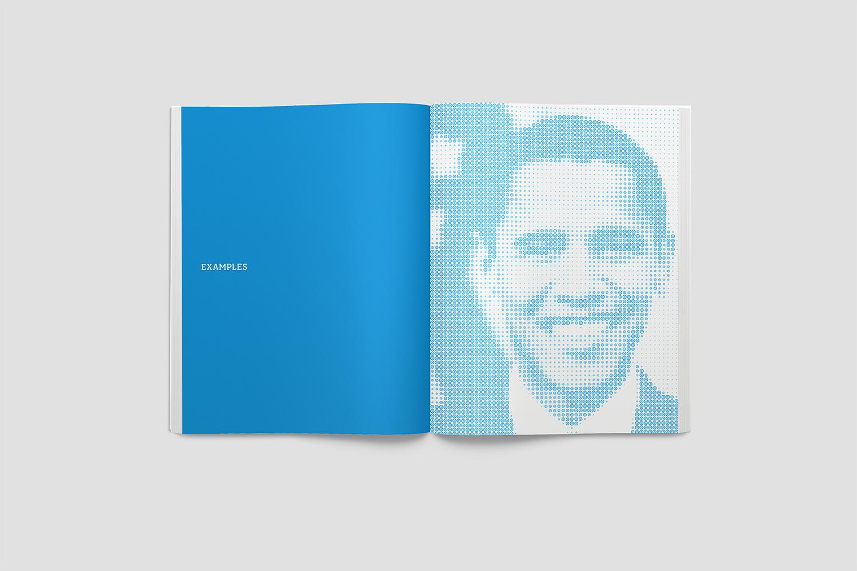 dems_book_4.jpg