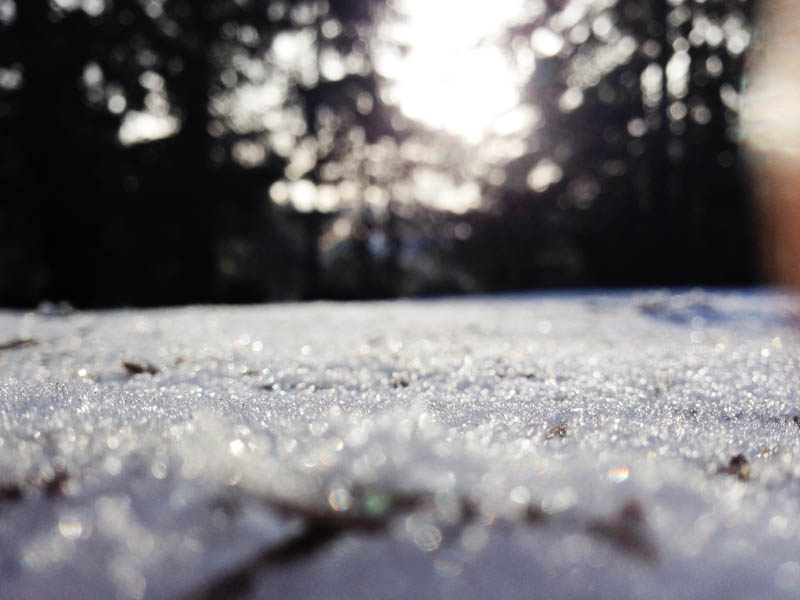 Snow | Mallorie Owens