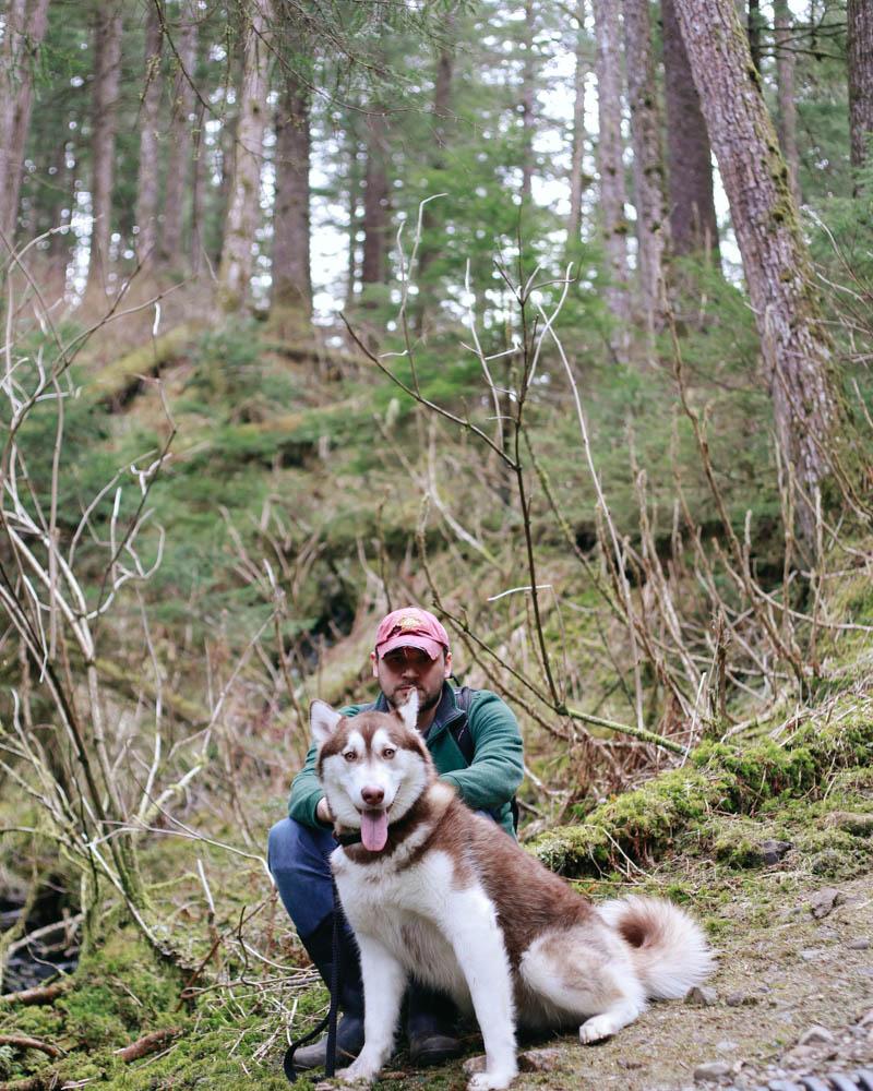 Alaskan Malamute   Mallorie Owens