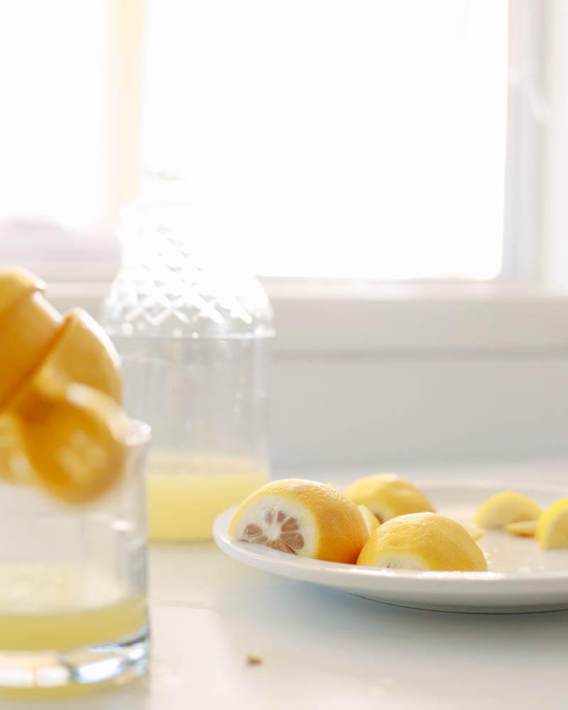 Lemon Poppy Seed Muffins Recipe   MALLORIE OWENS