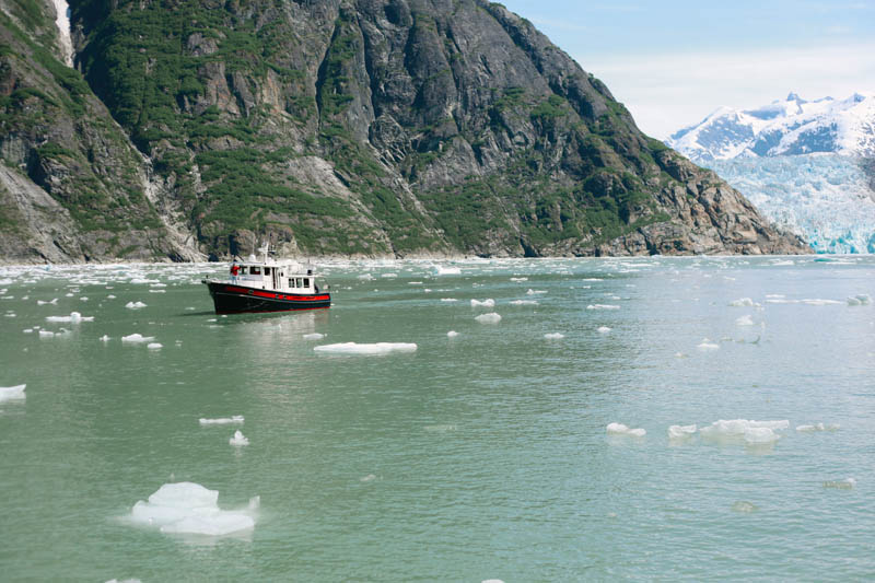 Places to Visit in Juneau, Alaska ↠ Tracy Arm Fjord | MALLORIE OWENS