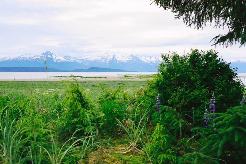 Eagle Beach, Juneau, Alaska | MALLORIE OWENS