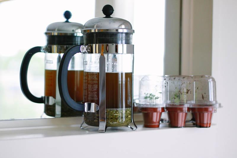 Green Tea   MALLORIE OWENS