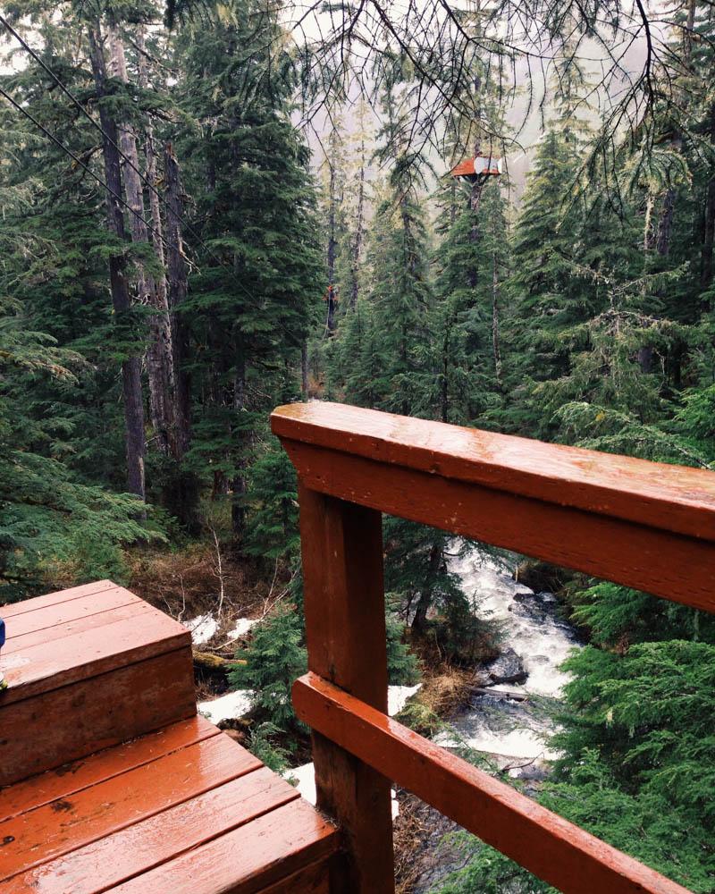 Places to Visit in Juneau, Alaska ↠ Ziplining Adventure | MALLORIE OWENS