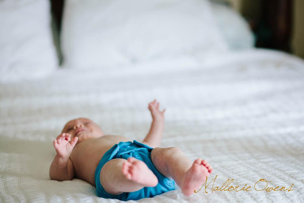 Lifestyle Newborn Photography   MALLORIE OWENS