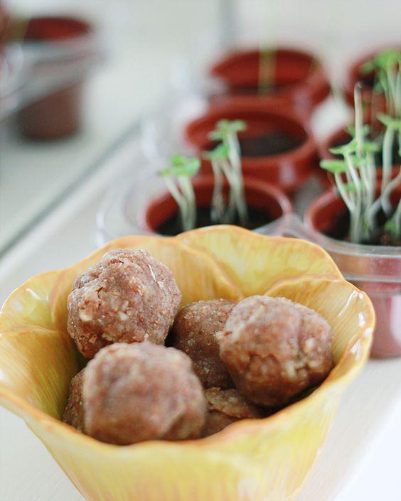 Energy Balls Raw Food Recipe | MALLORIE OWENS
