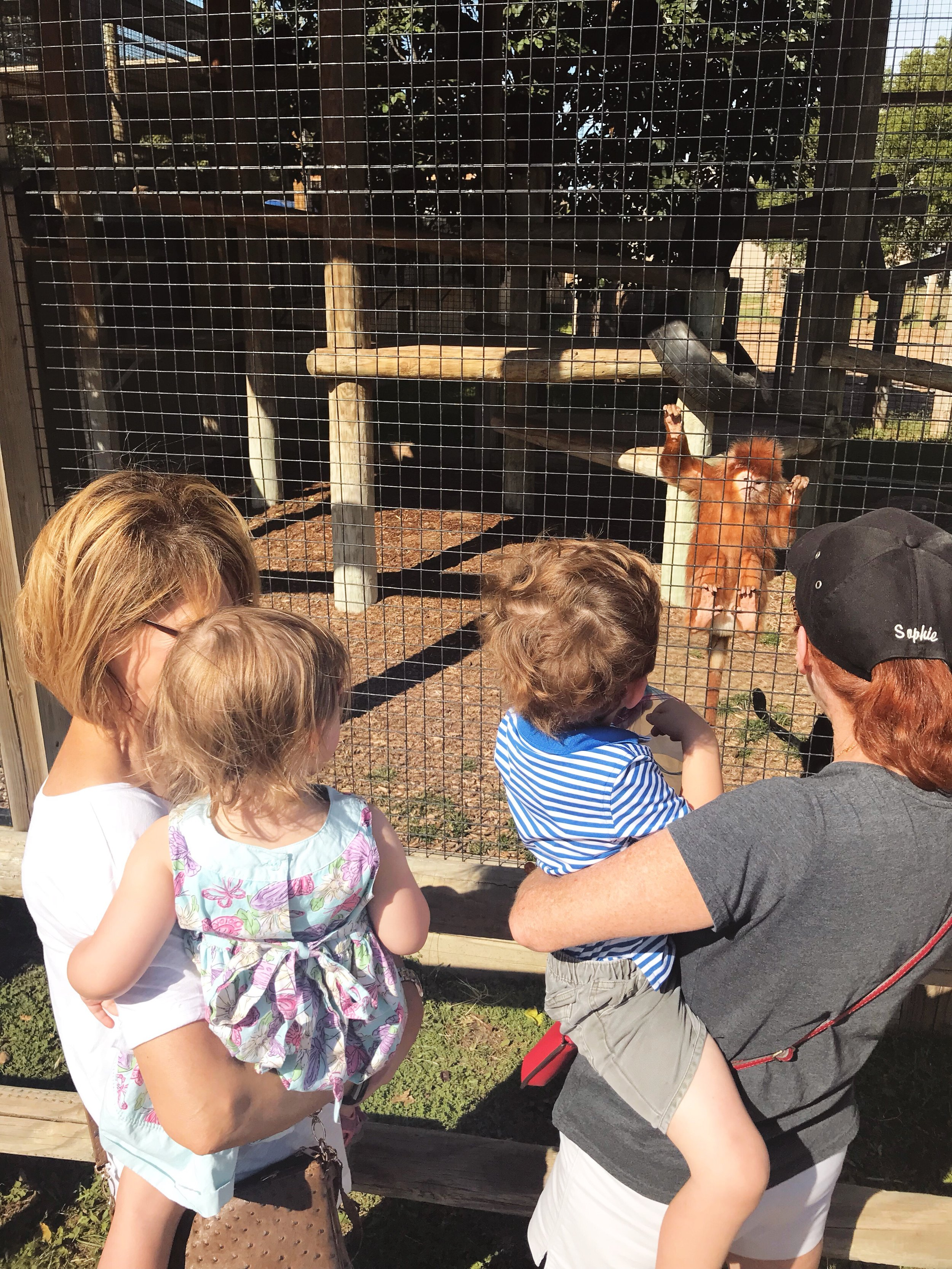 Places to Visit in Wichita, KS Tanganyika Wildlife Park | MALLORIE OWENS