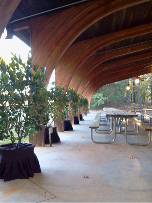 Live plants rented for a party at Sandy Creek Park line the perimeter of the venue.