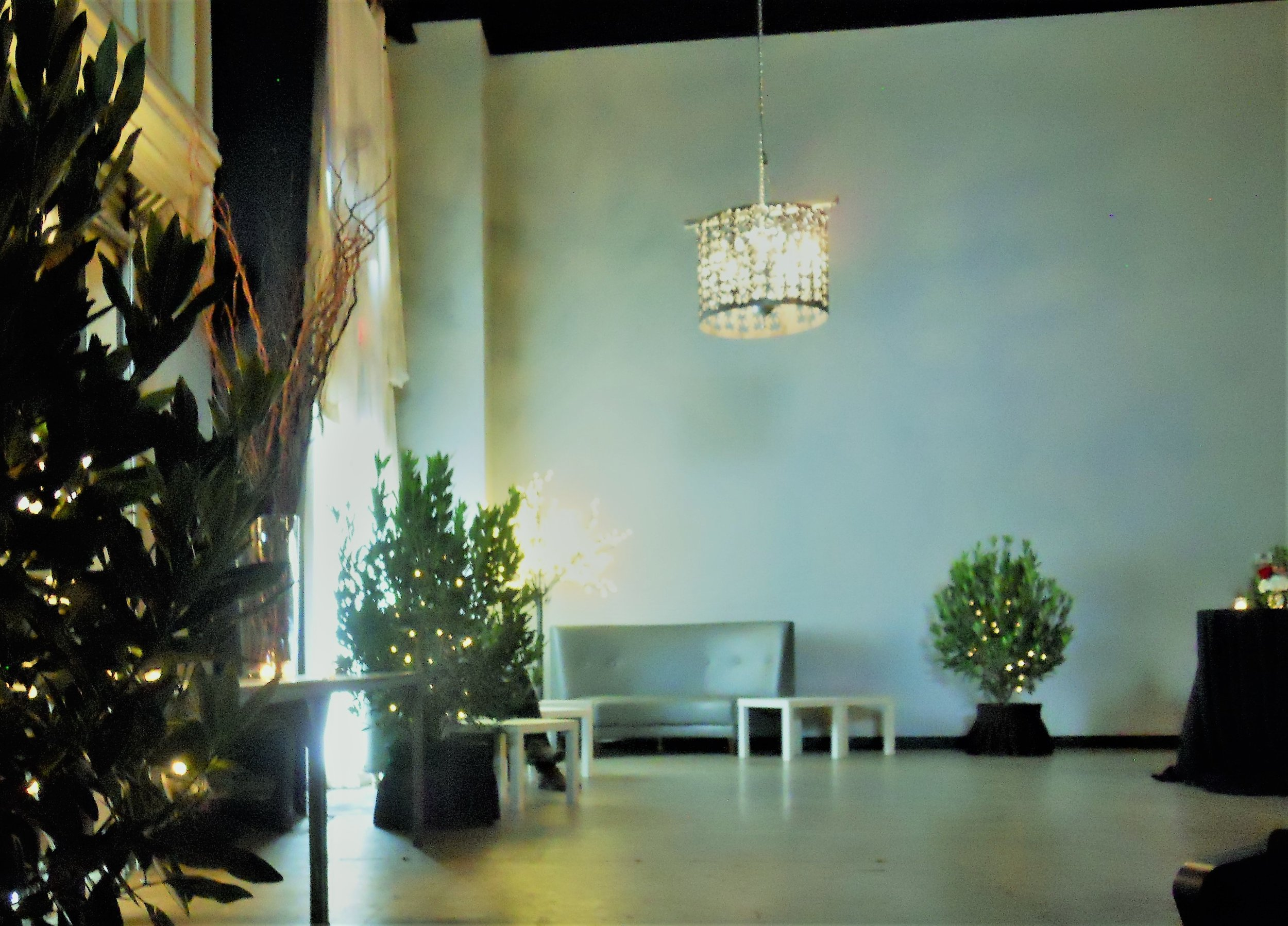 Live Plant Rental - We deliver live, green shrubs to your special event.