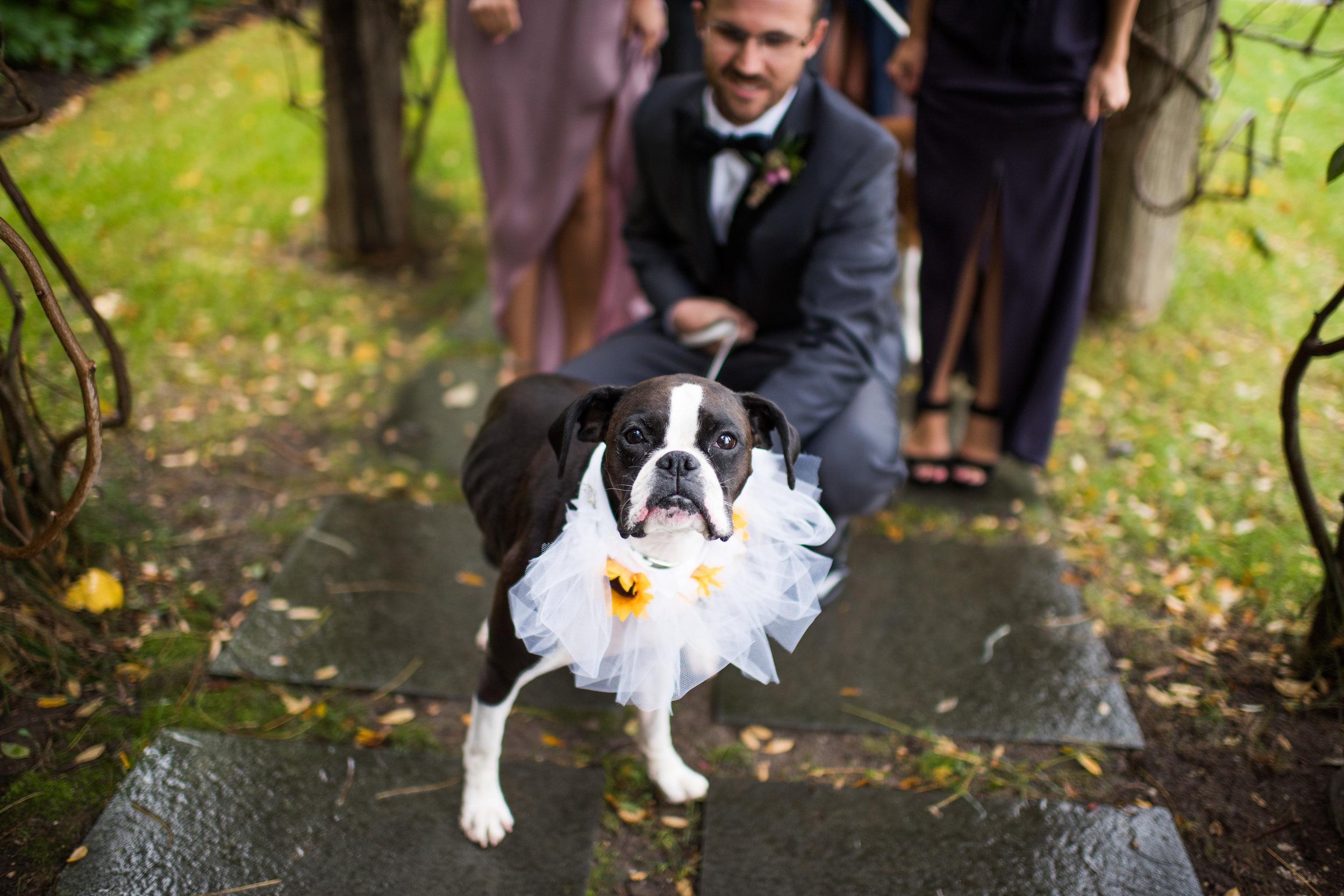 Wedding_762.JPG