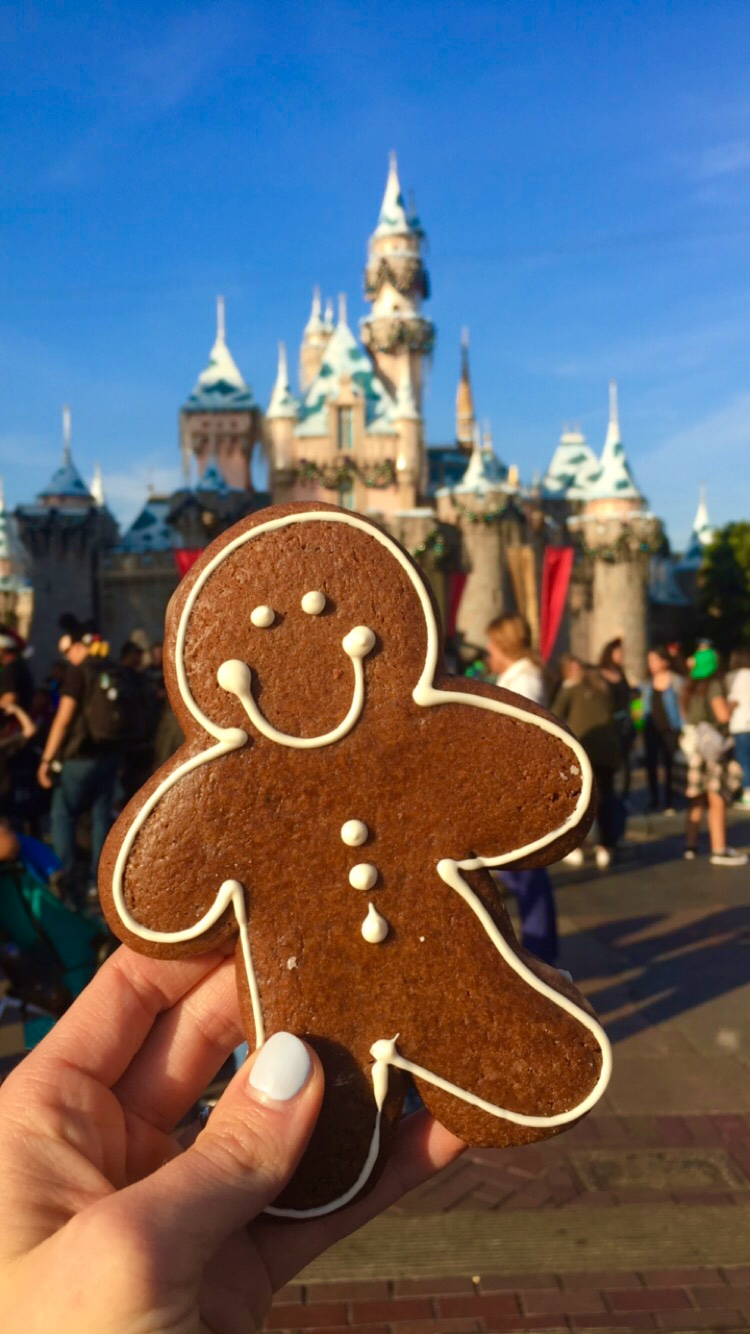 Gingerbread Boy Cookie