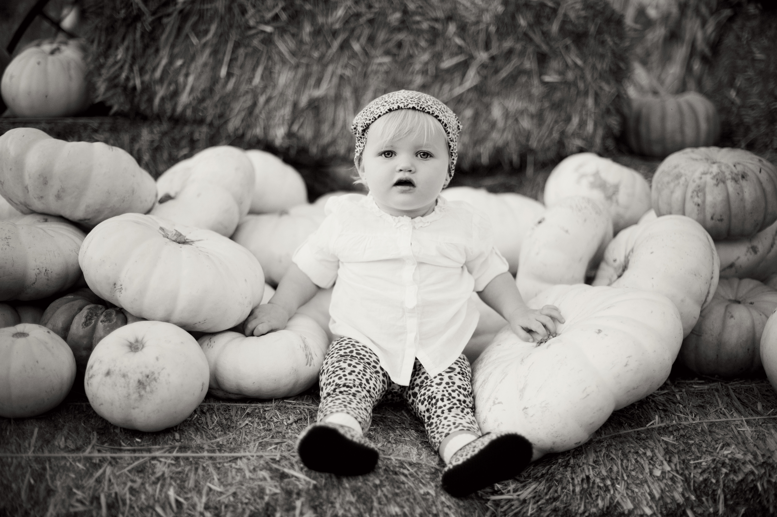 SanDiego-Kids-Portraits-Photography-Pumpkins