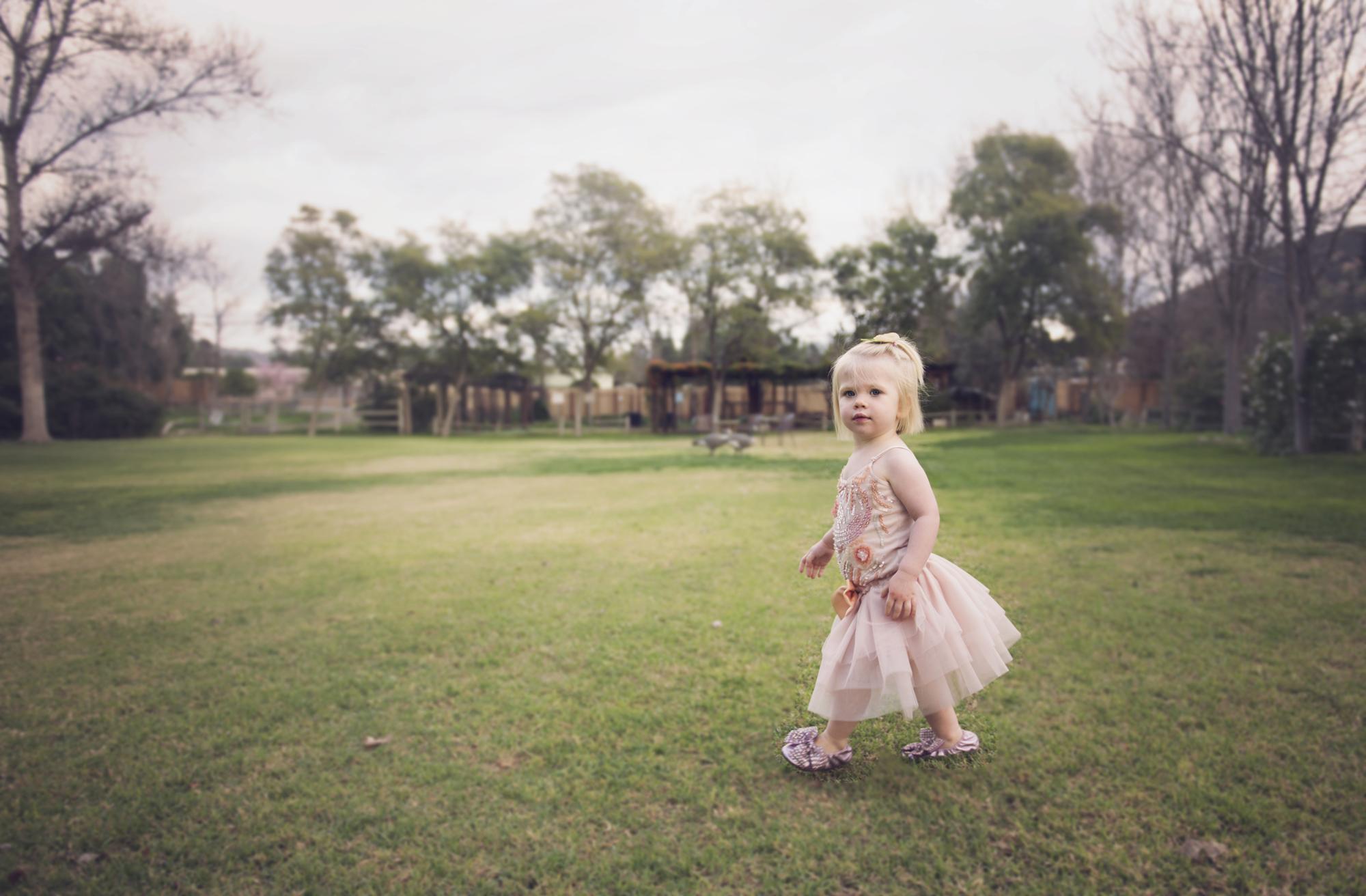 Michelle Mattox Photography