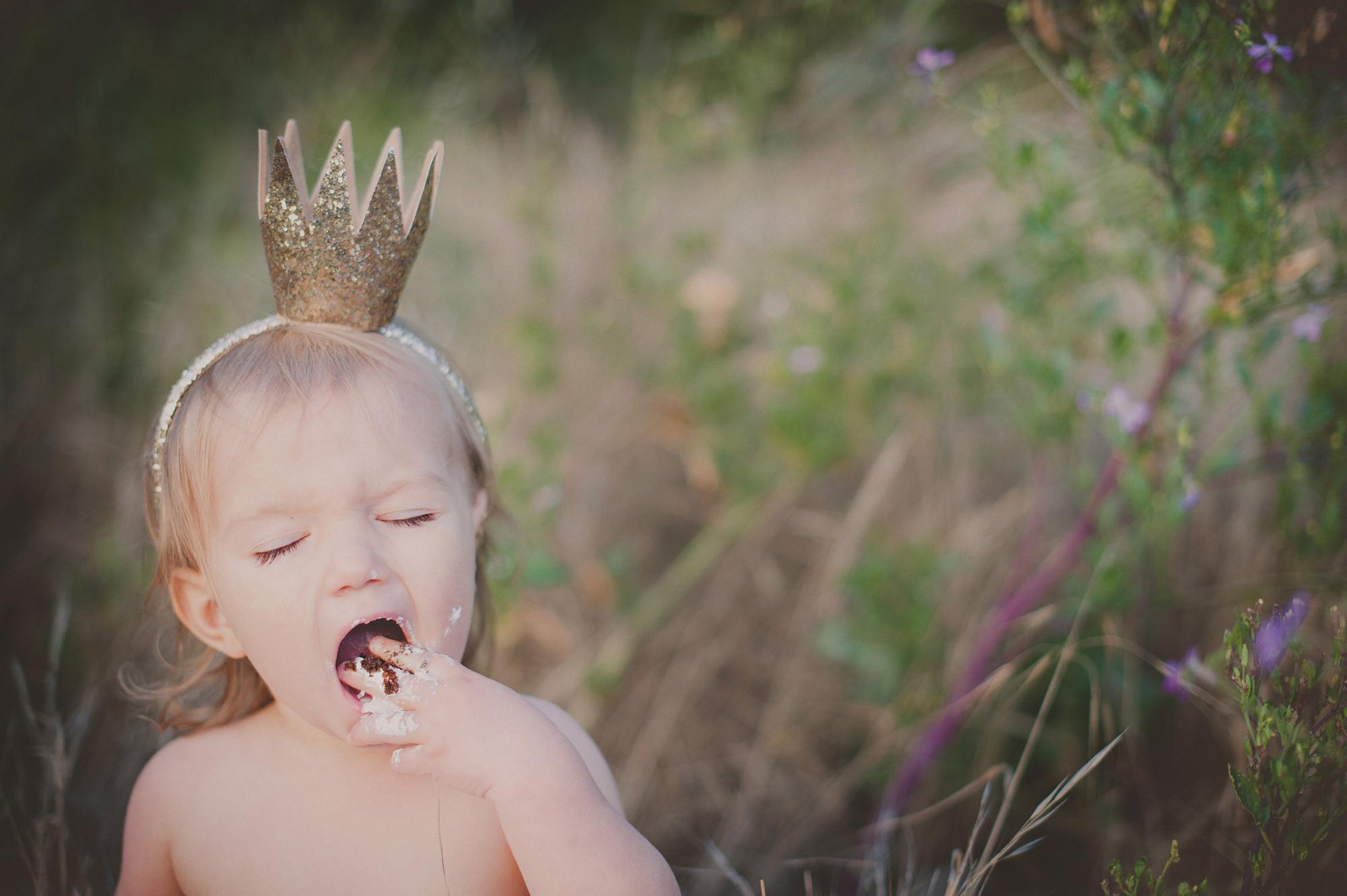 Michelle Mattox photography Cake Smash