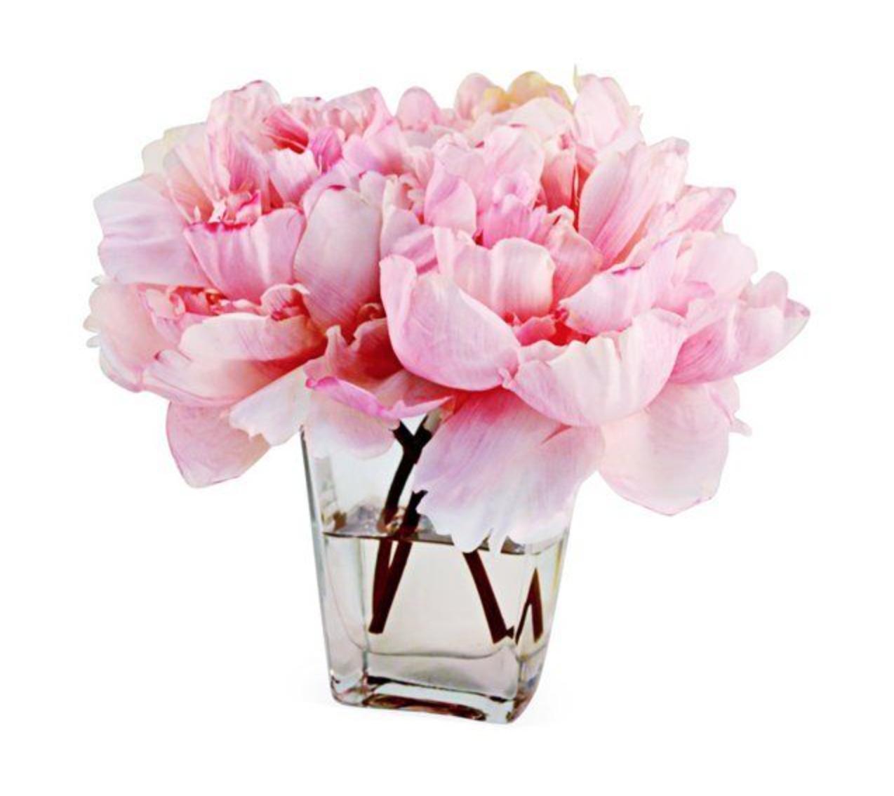 "9"" Peonies in Tapered Vase"