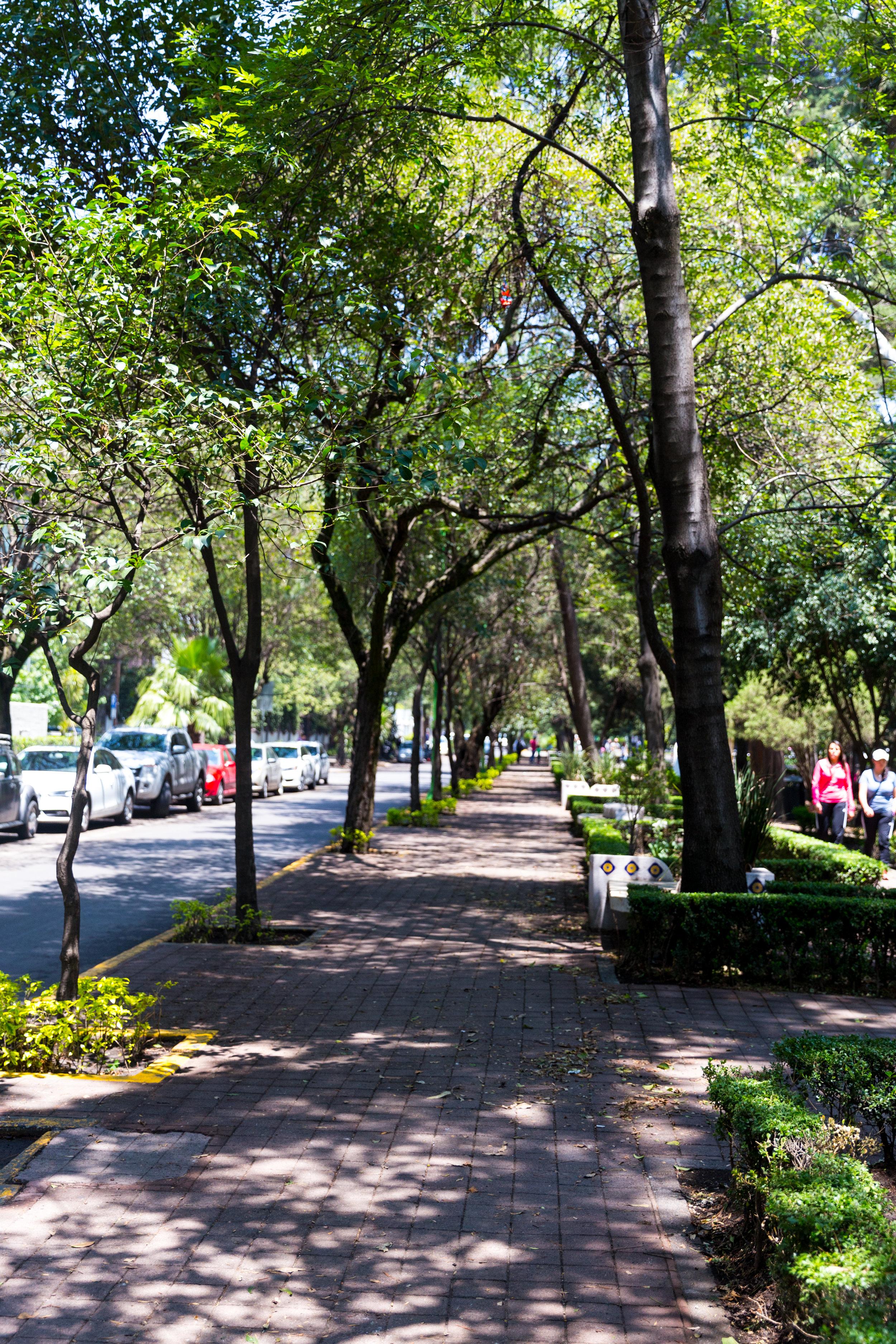 Mexico City Centro Historico-5.jpg