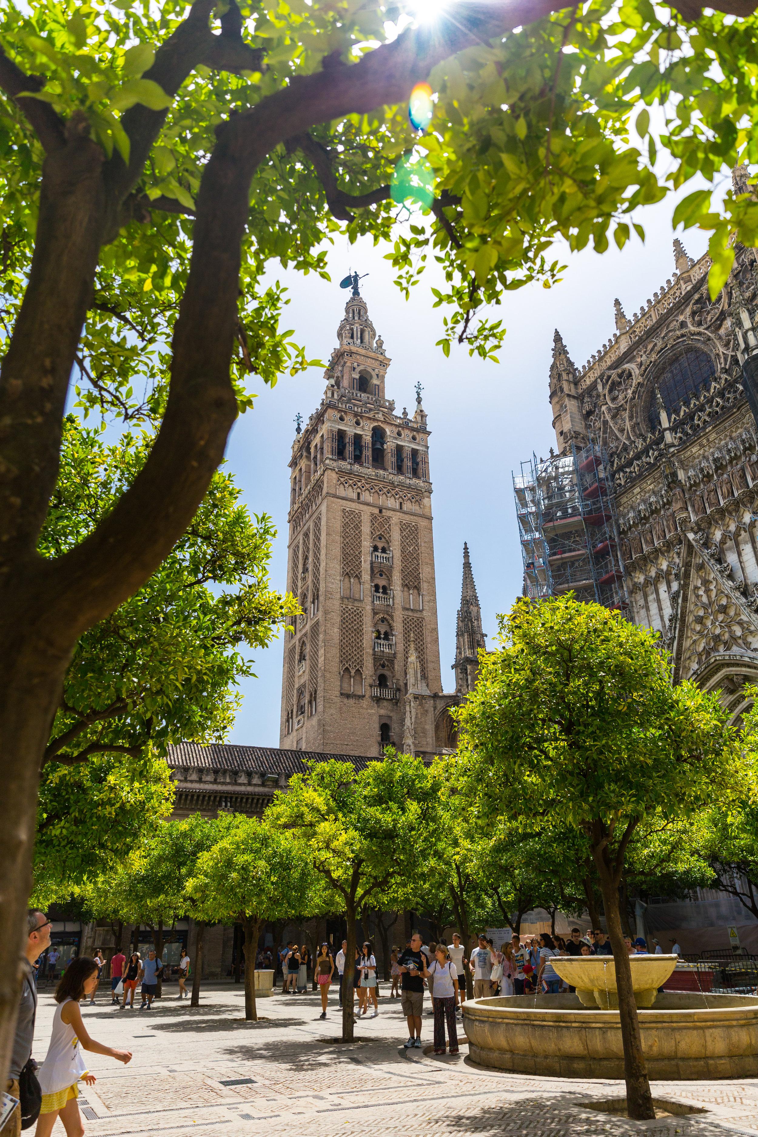 Seville Spain Summer-3.jpg