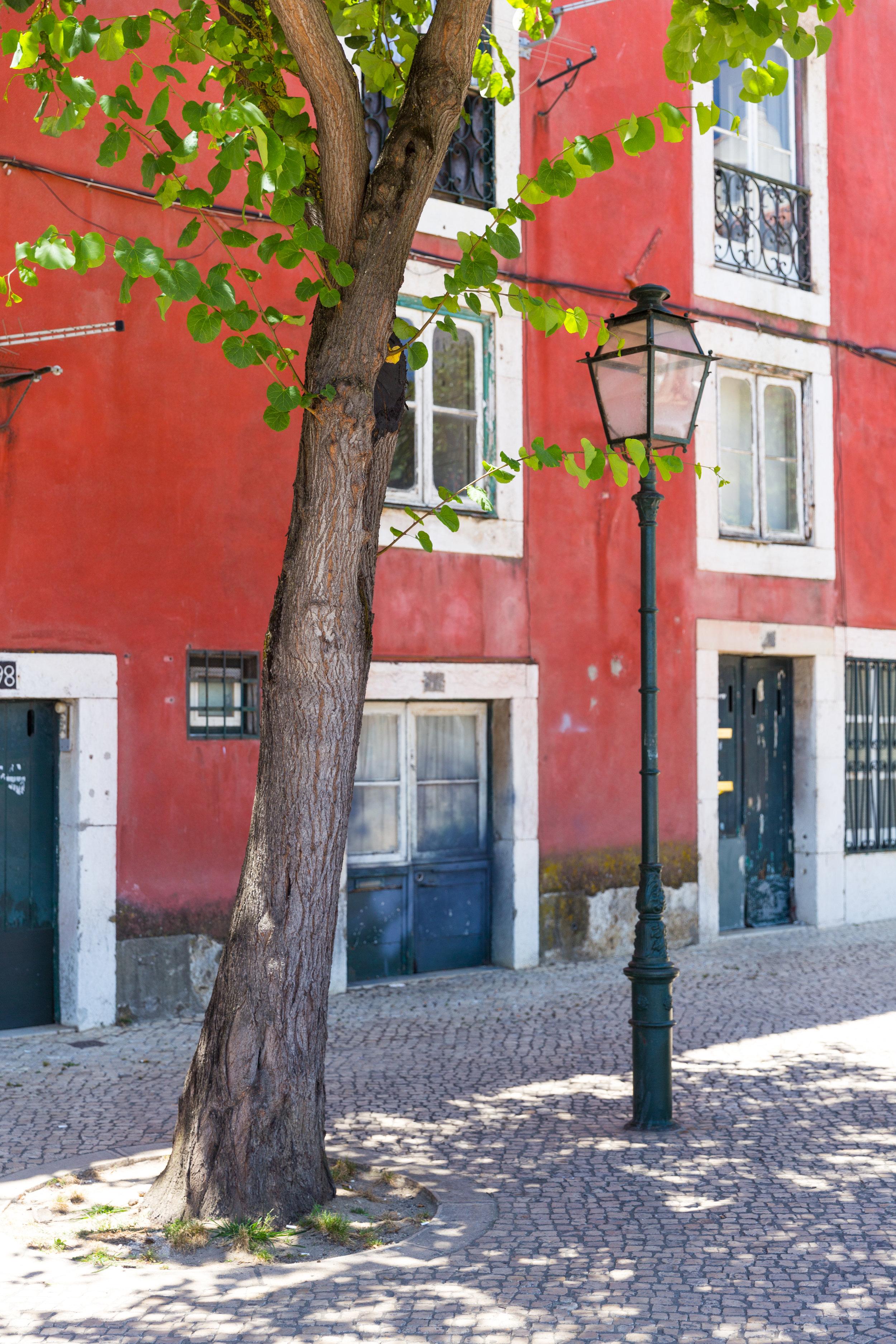 Lisbon Portugal Summer-28.jpg