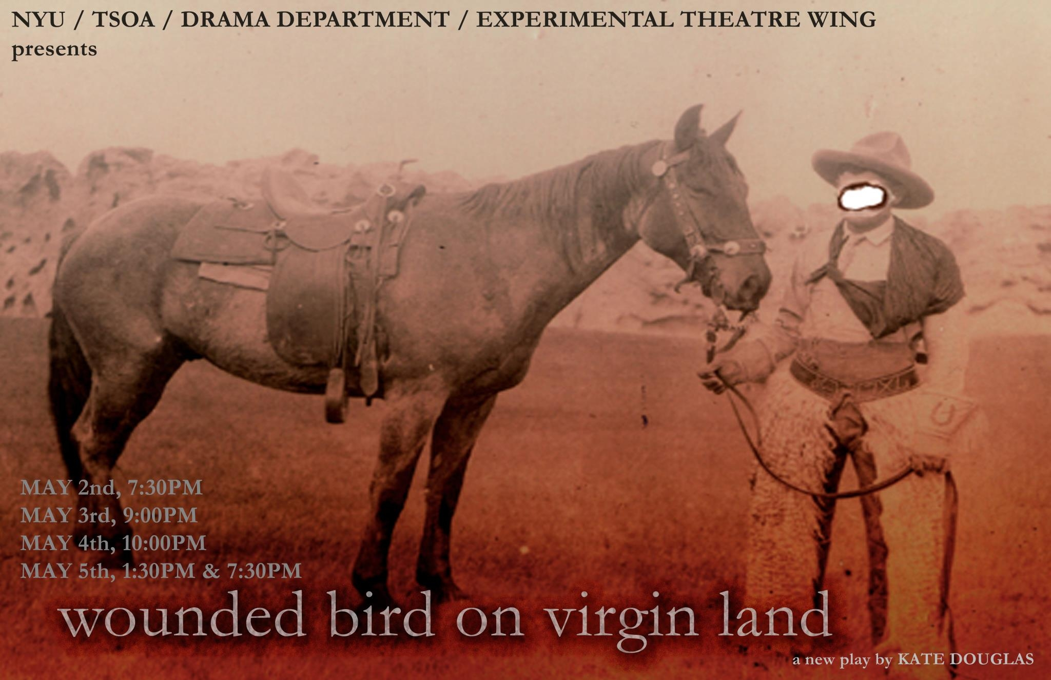 Wounded Bird poster.jpg