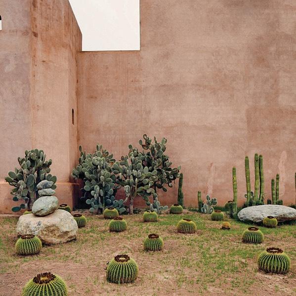 Cactus garden dream and color inspo . . . . . . . #cactusgarden  #colorinspo  #lifestyle  #wearewhatwedo