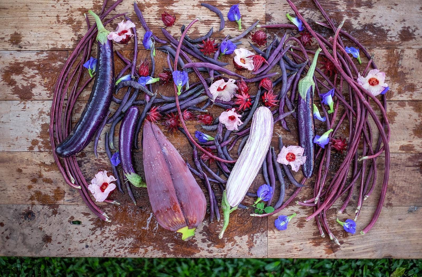 fresh purple veggies & edible flowers
