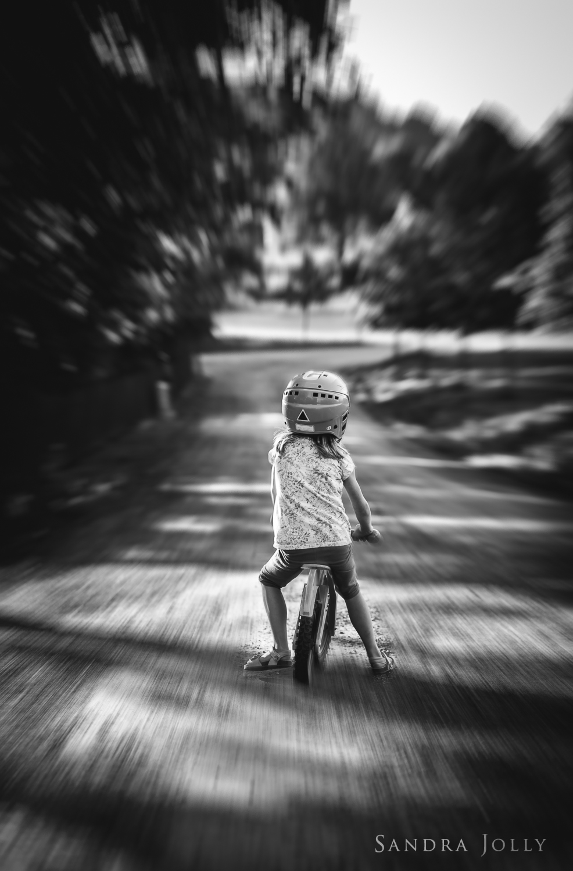 rebel rebel_sandra jolly photography