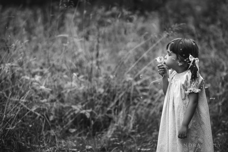 Dandelion girl_sandra jolly photography
