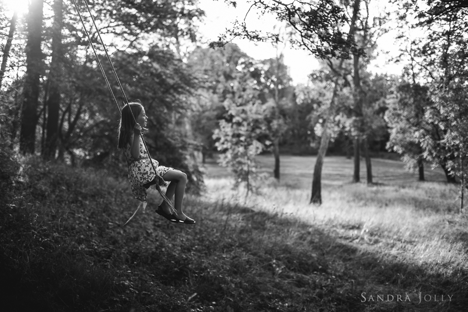 Up, up and away_sandra jolly photography