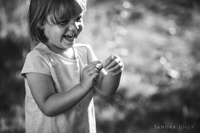 Spider catcher_sandra jolly photography