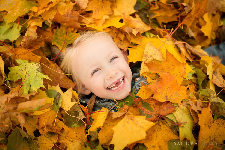 Leaves_sandra jolly photography