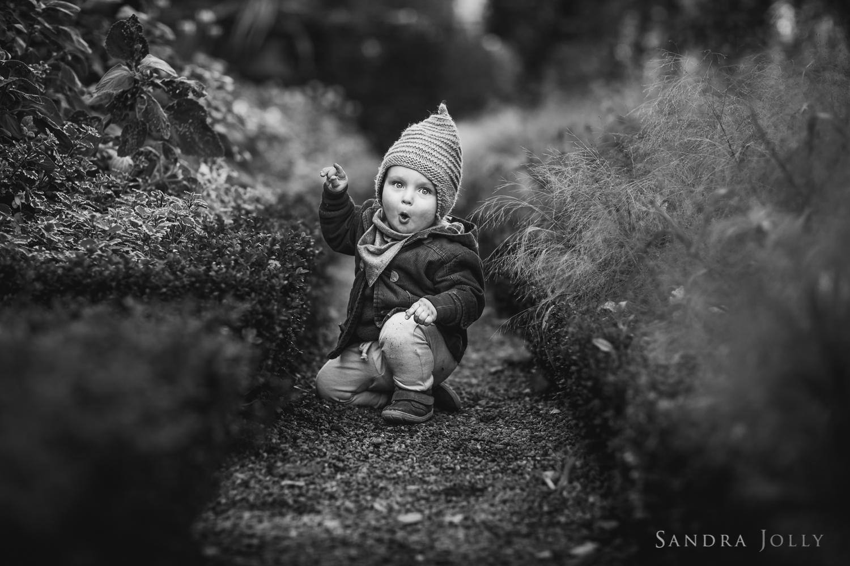 Sandra Jolly Photography-31.jpg