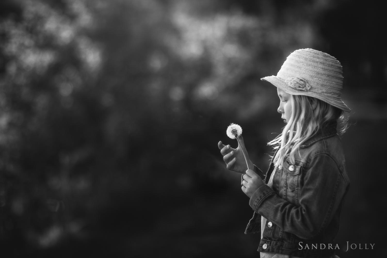Sandra Jolly Photography--5.jpg