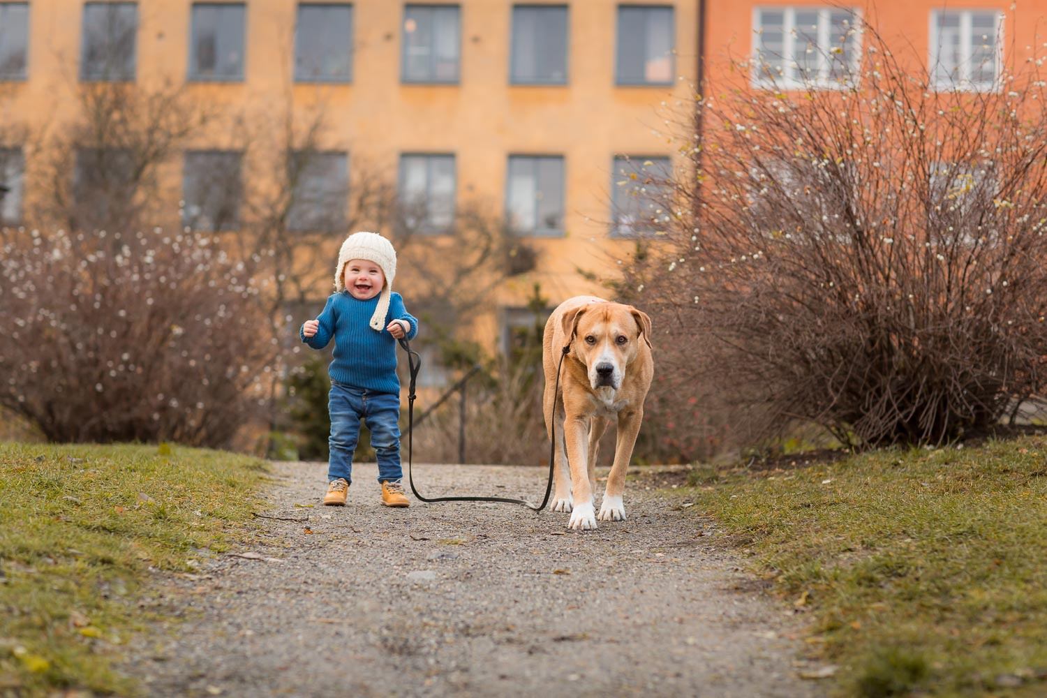 A-photo-of-a-little-girl-and-her-dog-in-Stockholm-by-Sandra-Jolly.jpg
