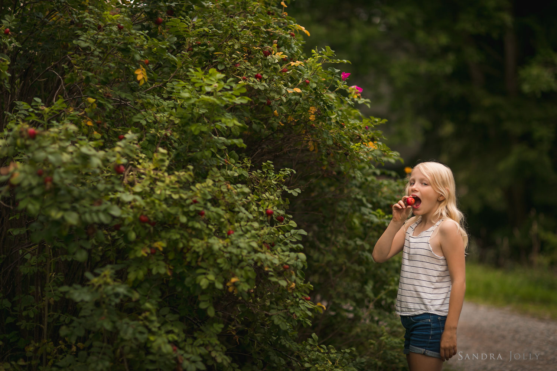 girl-eating-berry-picking-in-sollentuna-by-familjefotograf-Sandra-Jolly.jpg