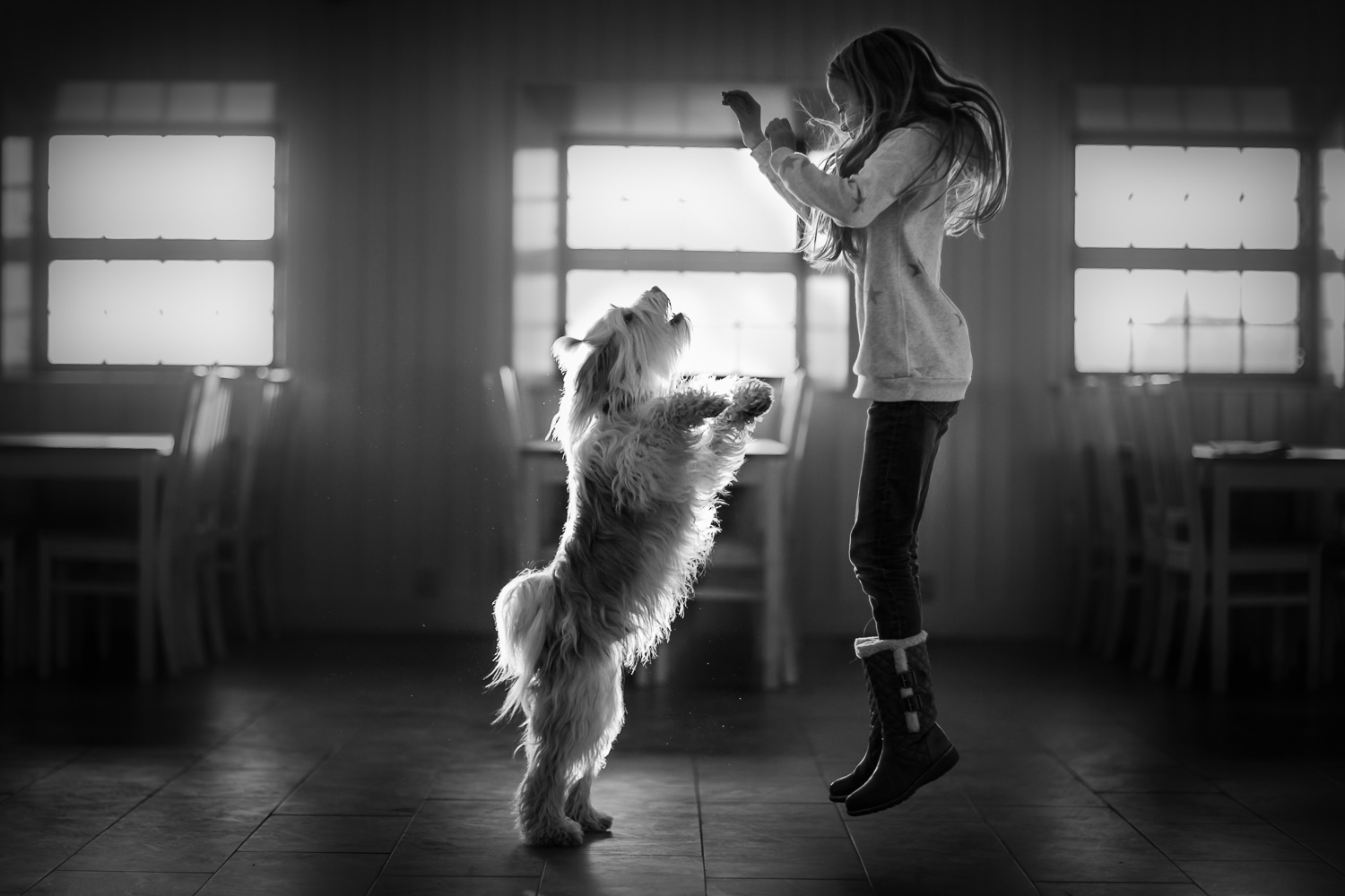 girl-and-her-dog-jumping-by-stockholm-barnfotograf-sandra-jolly.jpg